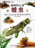 Small Insects-Big Mystery: Grasshoppers, Plant Destroyers (Chinese Edition) by shen ma ka tong (2011) Paperback