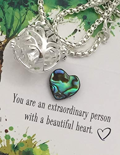 Smiling Wisdom - Tree Locket Abalone Heart Necklace & Encouraging Inspiring Message Gift Set - Woman Her Sister Friend Daughter - Abalone & Silver - New