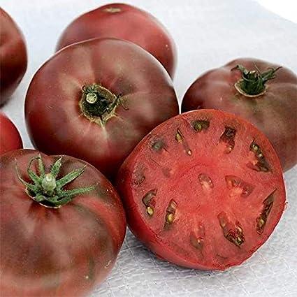 Heirloom Tomato Purple NON GMO Vegetable Seeds