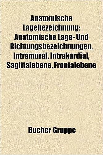 Anatomische Lagebezeichnung: Anatomische Lage- Und ...