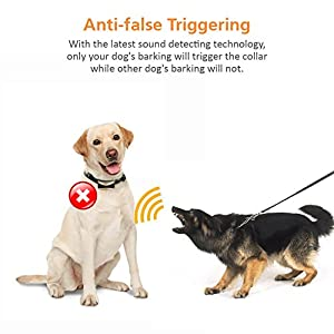 Regirock 2018 Upgrade Version Barking Control Collar