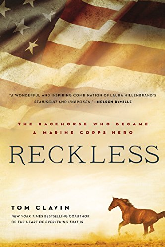 reckless-the-racehorse-who-became-a-marine-corps-hero