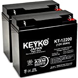 Jump N Carry JNC105 Jump Starter Battery 12V 22Ah SLA Sealed Lead Acid Rechargeable AGM Replacement Battery Genuine KEYKO (W/ L-1 Terminal) - 2 Pack