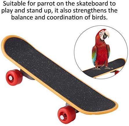 Dontdo 5//6//7 pz Skateboard Carrello Palla Puzzle Formazione Uccello Giocattolo Pappagallo Uccello Skateboard Palla Foraging Foraging Educational Puzzle Giocattolo