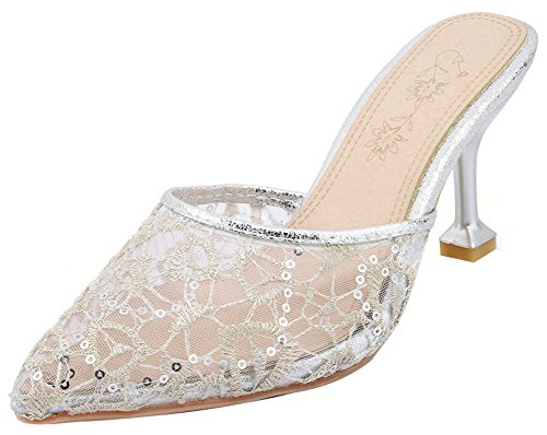 - Mofri Women's Elegant Lace Pointed Toe Clogs - Gauze Embroidered Solid Color - Slide on Stiletto High Heels Sandals (Silver, 9.5 B(M) US)