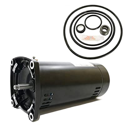 Puri Tech Sta-Rite Dyna-Glas 1.5HP MPRA6F-148L Replacement Motor Kit AO Smith USQ1152 w/GO-KIT-47: Garden & Outdoor
