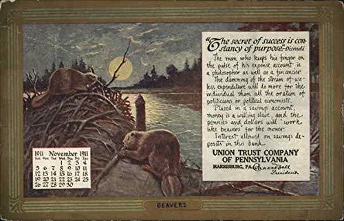 (Beavers, Union Trust Company of Pennsylvania Harrisburg Original Vintage Postcard)