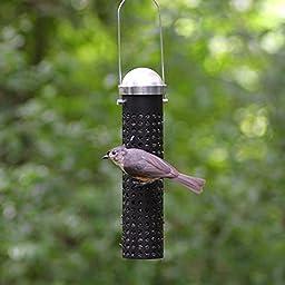 Perky-Pet 395 10-Inch Sunflower Seed and Peanut Wild Bird Feeder