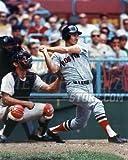 Carl Yastrzemski Boston Red Sox at bat the captain 8x10 11x14 16x20 photo 837 - Size 11x14