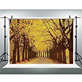Vinyl Photography Background,Landscape,Photography Backdrop Studio Props,6.5x6.5ft,Botanical Garden Autumn Leaves in The Fall Linden Alley in Kiev Ukraine Image