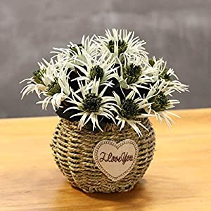 Jhyflower Decoration fresh flowerpot planted European guest coffee flower decoration restaurant simulation Museum pendulum, green Thorn begonia 93