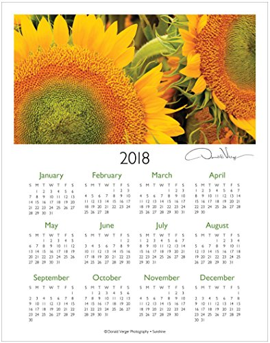 2018 Sunflowers One Page Fine Art Wall Calendar. Sunshine. 11x14 Great For Framing. Best Quality Birthday, Christmas, Mother's Day & Valentines Gifts for Women, Men & Kids. Unique Idea for Him or (Great Birthday Gifts)
