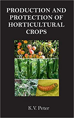 Production And Protection Of Horticultural Crops por K. V. Peter