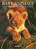 Baby Animals, Paul Sterry, 159764109X