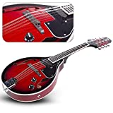 Mandolin A Style Acoustic Electric Mandolins