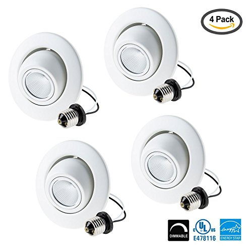 Light Directional Downlight Retrofit UL Listed