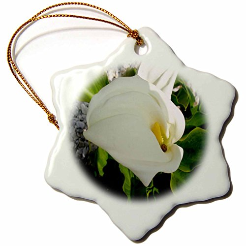 3dRose A Large Single White Calla Lily Flower-Beautiful Calla Lily Flower, Snail - Snowflake Ornament, Porcelain, 3-Inch (ORN_167488_1) ()