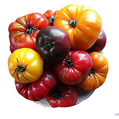 PLEASE READ! THIS IS A MIX!!! 30+ Rainbow Deluxe Tomato Seeds MIX, ORGANICALLY GROWN Mix 16 Varieties, Heirloom NON-GMO, Indeterminate, Old German, Chocolate Stripes, Ukrainian Purple, Amish Paste USA : Garden & Outdoor