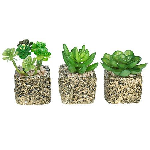 Set Of 3 Decorative Green Realistic Mini Succulent Plants W/ Brown Stone  Pots   MyGift Part 72