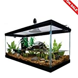 Reptile Habitat Setup Aquarium Tank Kit Filter Screen Lid Bask Lamp...