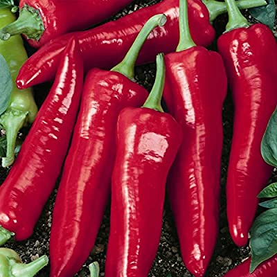 Big Jim Hot Pepper Garden Seeds - Non-GMO, Heirloom Vegetable Gardening Seeds