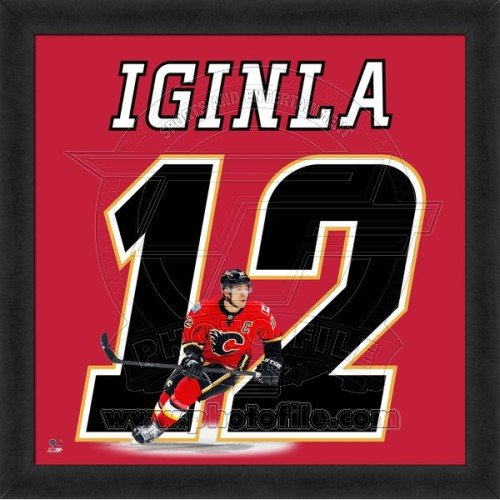 - Biggsports Jarome Iginla Calgary Flames 20x20 Framed Uniframe Jersey Photo