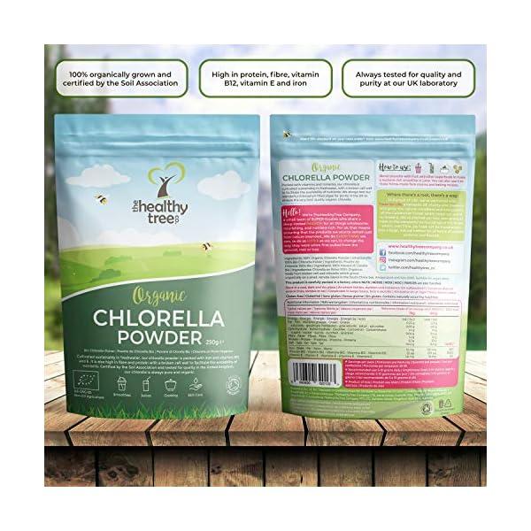 Polvere di Clorella Bio di TheHealthyTree Company per Succhi e Frullati - Alto Contenuto di B12, Proteine e Ferro - Muro… 4 spesavip