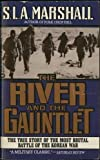 Book cover for The River and the Gauntlet