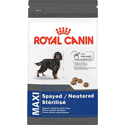 Royal Canin Maxi Spayed/Neutered Dry Dog Food, 6-Pound