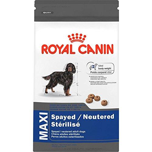 Royal Canin Maxi Spayed/Neutered Dry Dog Food, 6-Pound
