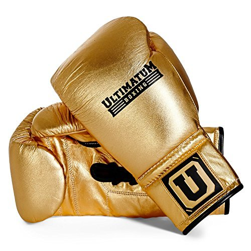 Amgo Professional Grade Design General All Purpose Boxing Training Gloves for Bag, Pad, Sparring Red (14 oz)