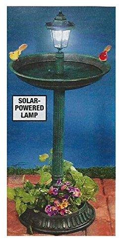 Trenton Gifts Green Weather Resistant Bird Bath & Planter With Solar Lamp Topper | 33