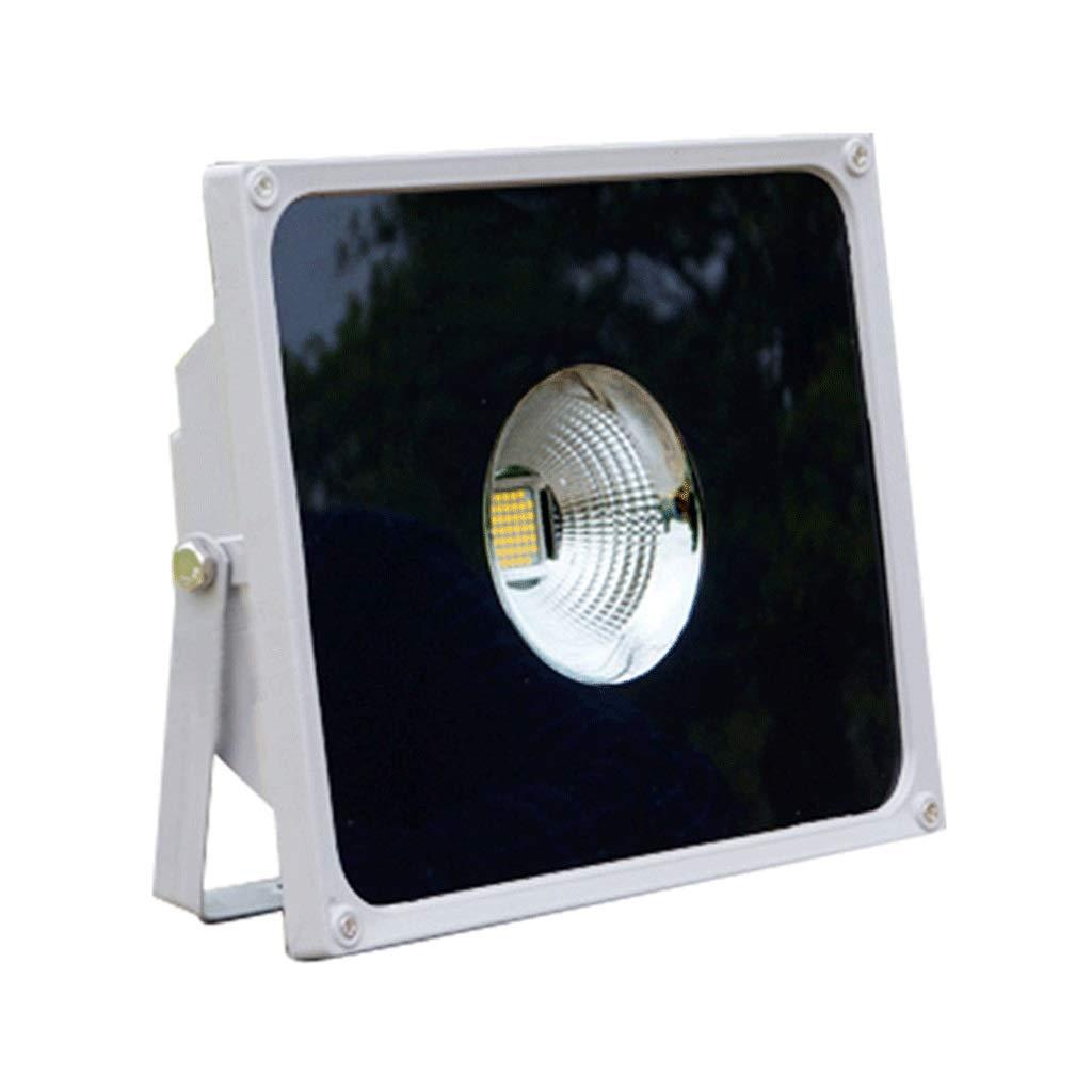 LIHM LED屋外セキュリティライト防水IP66屋外ライト110 Lm/Wハイパワースポットライト (色 : 暖かい光, サイズ さいず : 250w) 250w 暖かい光 B07QKSKTSP