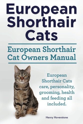 European Shorthair Cats. European Shorthair Cat Owners Manual. European Shorthair Cats care, personality, grooming, health and feeding all included.