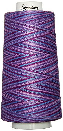 Signature 49S-F155 Cotton Quilting Thread, 3000 yd, Variegated Pansy Patch