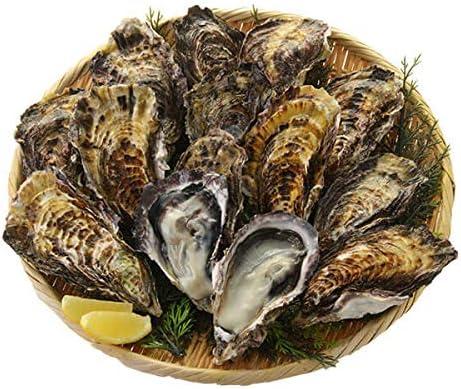 シーフード本舗 広島県産 牡蠣 殻付き 10個 冷凍 カキ かき BBQ 国産 加熱用 貝 焼き牡蠣