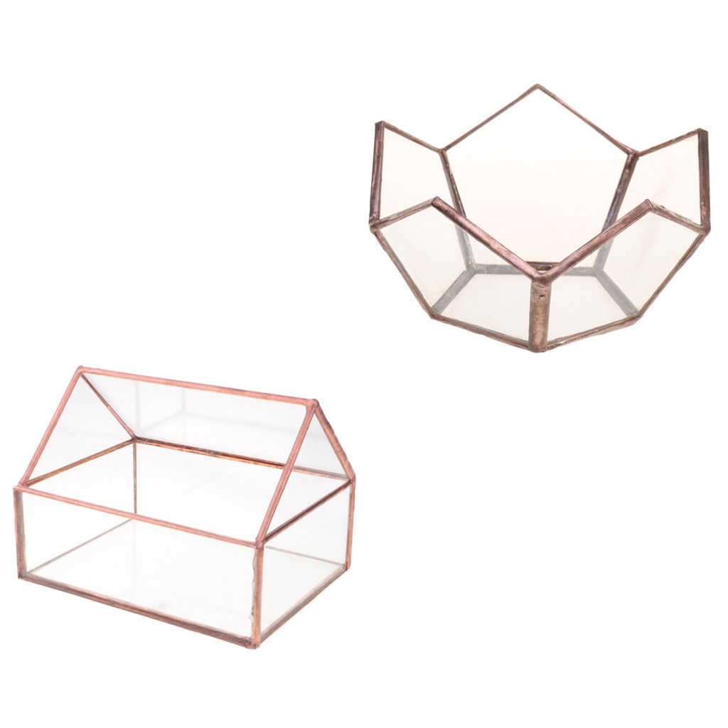 Dovewill 2x Open Clear Glass Geometric Terrarium Succulent Plants Planter Fairy Garden Wedding Décor