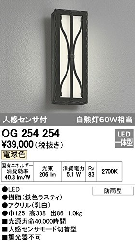 ODELIC(オーデリック) エクステリアライト LEDポーチライト 樹脂(鉄色ラステイ):OG254254 B008KH06XG 16637