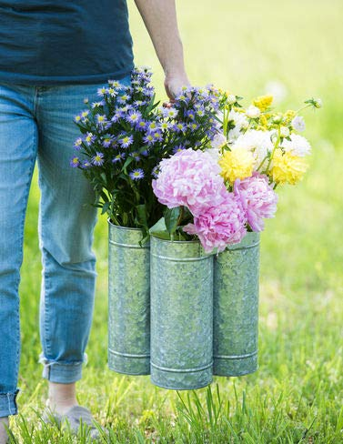 Gardener's Supply Company Galvanized Flower Caddy