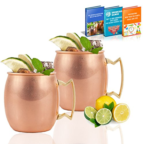 Premium Moscow Mule Copper Mugs - Stainless Steel Moscow Mule Cups - Highest Quality Set of 2 Moscow Mule Mugs - Suitable for Party / Friend & Family Meeting with 3 Bonus Guide Ebook by TAKI