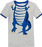Boys Pajamas 100% Cotton PJs Dinosaur Sleepwear for Kids 2 Piece Short Sets