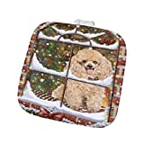 Please Come Home For Christmas Poodle Dog Sitting In Window Pot Holder POT48412