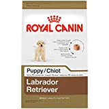 ROYAL CANIN BREED HEALTH NUTRITION Labrador Retriever Puppy dry dog food, 30-Pound Review