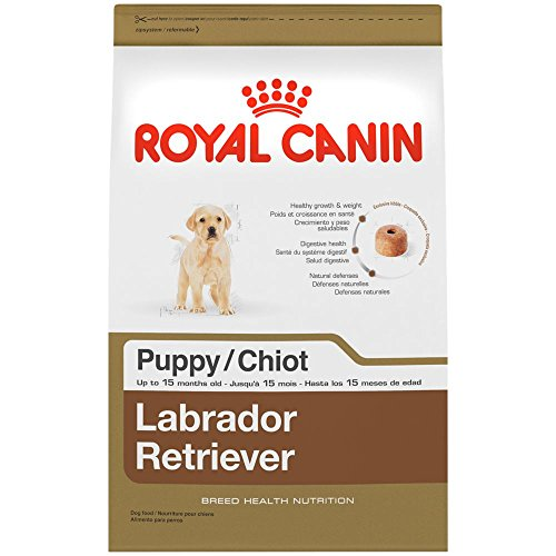 ROYAL CANIN BREED HEALTH NUTRITION Labrador Retriever Puppy dry dog food, 30-Pound