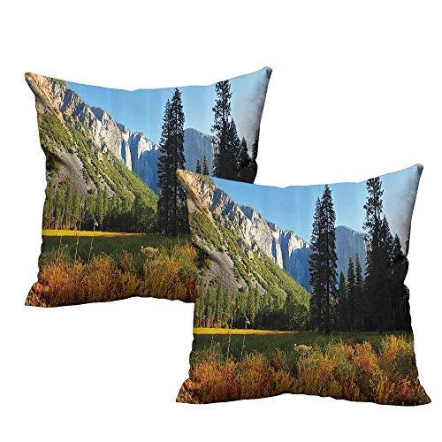 2pc Set of Pillow Cases,Apartment Decor,Birds Flight Flies Over Mountains of Yosemite National Park Early Fall Season,Orange Blue Green 20