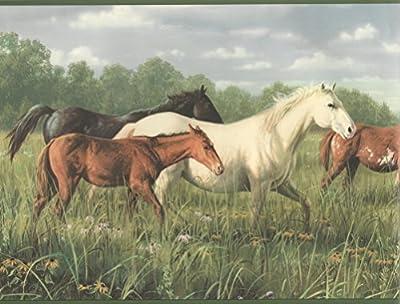 Wallpaper Border Hautman Brothers Horses Running in Pasture Green Trim