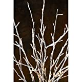 Light Garden 01915 - 184135 60LT 20' LED BIRCH BRANCH SET Electric Birch Branches