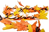 CraftMore Lighted Fall Garland w/ Autumn Leaves 9'