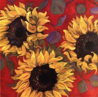 (Sunflower I by Shari White - 12x12 Inches - Art Print Poster )