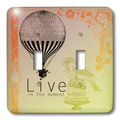 3dRose lsp_79179_2 Live in The Moment Vintage Bird and Hot Air Balloon Double Toggle Switch